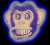 monkeypic.jpg